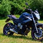 Yamaha Xj6 019