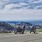 Richtung Rheinebene