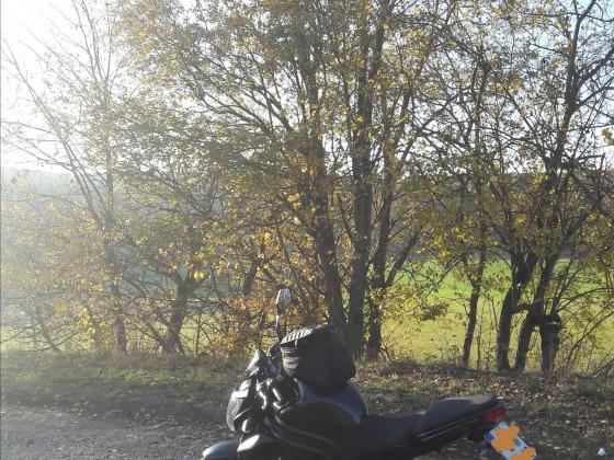 Ein herrlicher Herbsttag